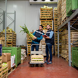 Cold chain technologies keep produce fresh